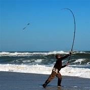 Tutte le canne per la pesca in mare